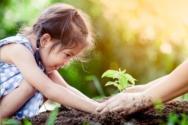 Mit Kindern Gemüse anpflanzen in Ihrem Hochbeet vom Villacher Saubermacher