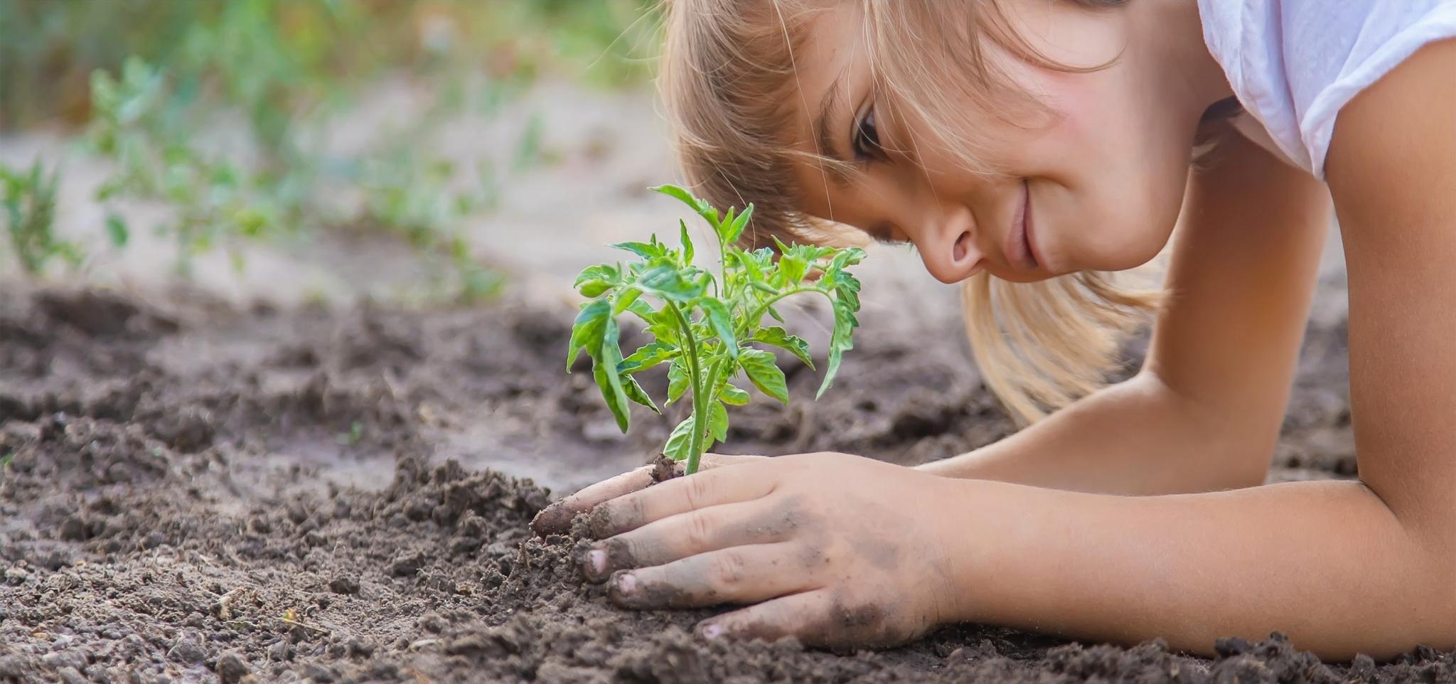 Produkte für Balkon und Garten vom Villacher Saubermacher